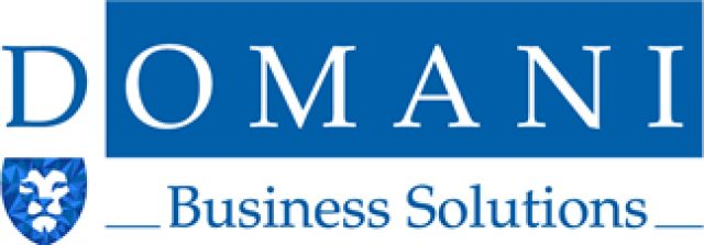 Domani Business Solutions
